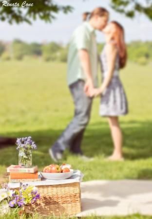 love story photo session-engagement photoshoot-houston photographer-picnic photo session